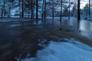 Vesine talv