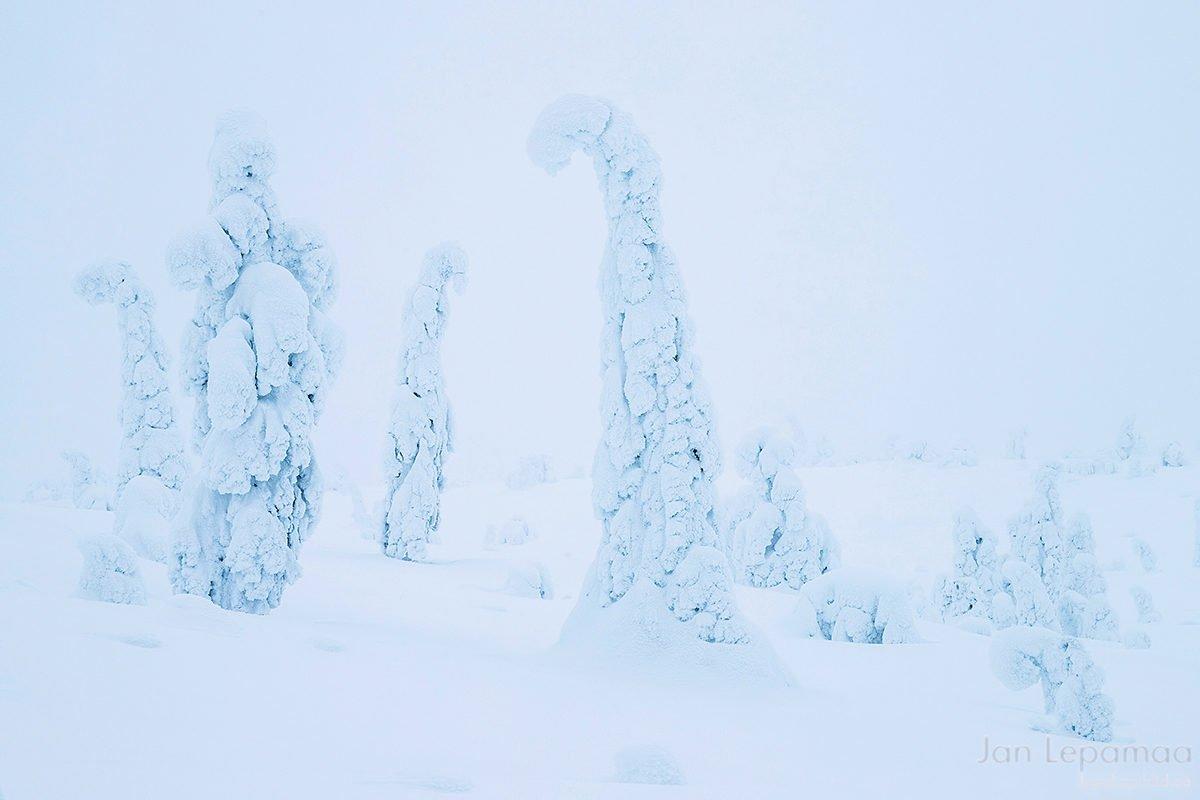 Lumine Riisitunturi